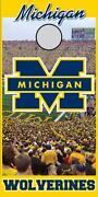Michigan State Cornhole