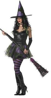 Sexy Böse Hexe Kostüm Small Medium Damen West oz Leder (Böse Hexe Sexy Kostüm)