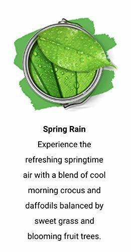 Paint Scentsations 104-01 Spring Rain 1-Ounce Packet, Pack of 8
