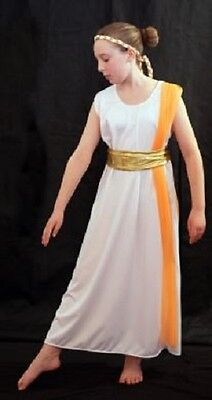 Ancient Rome Costumes (World Book Day-Ancient Egypt-Rome-SLAVE GIRL COSTUME with ORANGE DRAPE All)