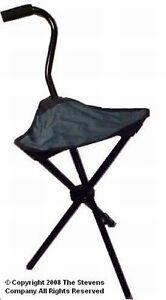 Folding Portable Walking Stick Cane Green Chair Travel
