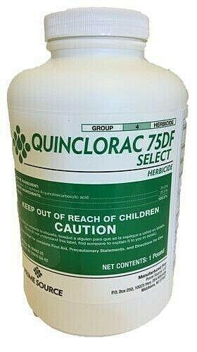 Quinclorac Select 75DF Herbicide - 1 Pound (Drive 75, Quinstar)