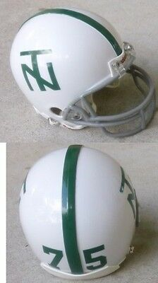 North Texas Football - NORTH TEXAS EAGLES MEAN JOE GREENE 1967  MINI FOOTBALL HELMET