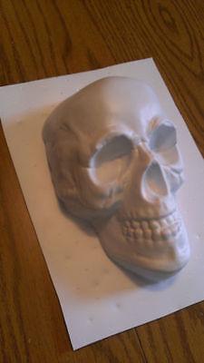 "Skull Mold Plastic 8""x5""x3.5"" Cement, Plaster, Resin Casting, Halloween *WOW*"