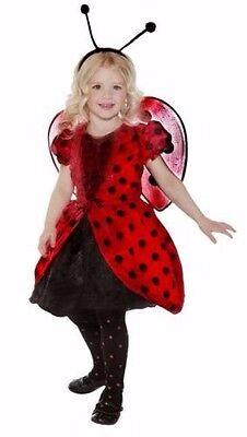 Little Lady Bug ~ Halloween Costume ~ Size 4t - 6t (Bug Halloween)