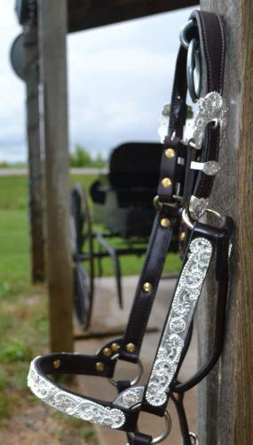 Reit- & Fahrsport-Artikel Pferdeausstattung & Zubehör BILLY ROYAL SILVER SHOW HALTER STERLING OVERLAID FILLIGREE W/ LEAD GORGOUS!!!