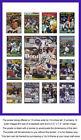 Minnesota Vikings NFL Photos