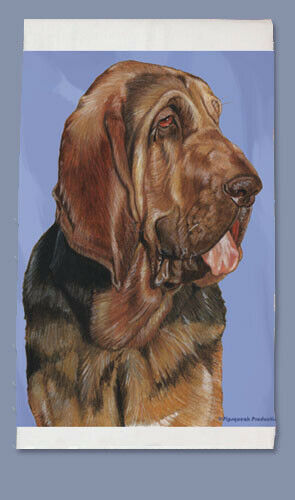 Bloodhound Dish Towel