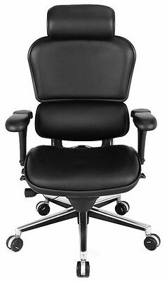 Ergohuman Raynor Le9erg Ergonomic Executive Leather Office Chair High Back Black