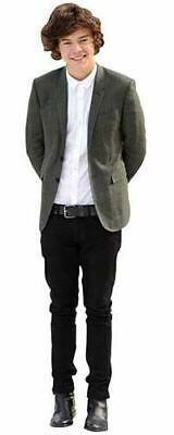 Harry Styles (Grey Blazer) Cardboard Cutout (mini size).