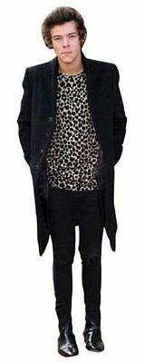 Harry Styles Cardboard Cutout (Harry Styles (2013) Cardboard Cutout (lifesize).)