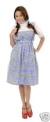 es Big Sizes Wizard Of Oz Dress Kansas Farm Girl 00760 (Big Girl Kostüme)