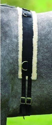 Shires Fleece Lined Training Surcingle - Black - Size: Pony, Cob or Horse