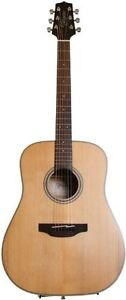 Wanted Takamine GD20-NS Dreadnought Acoustic Guitar, Natural