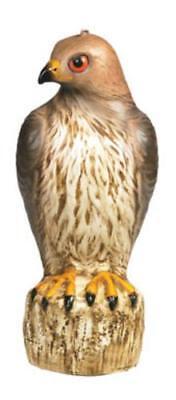 Bird-B-Gone MMRTH1 Red Tailed Hawk Decoy