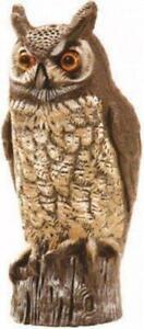 Owl Statue eBay