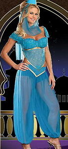 BELLY-DANCER-BOLLYWOOD-JASMINE-GENIE-ARABIAN-PRINCESS-LADIES-FANCY-DRESS-COSTUME