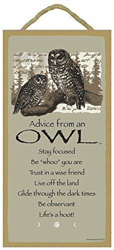 "5"" X 10"" ADVICE FROM AN OWL WOOD PLAQUE Inspirational Sign Novelty Gift NEW"