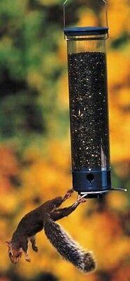 SQUIRREL PROOF BIRD FEEDER - Yankee Dipper - SIZED FOR SMALL BIRDS  - DYYCPD Dipper Squirrel Proof Bird Feeder