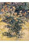 Van Gogh Botanical Decorative Posters & Prints