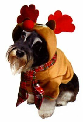 """Dogs & co Christmas fancy dress costume for dogs reindeer outfit 14"""" 36cm buy£10 - Buy Dog Costume"""