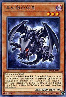 Yu-Gi-Oh / Red-Eyes Baby Dragon (Rare) / DP18-JP001 JAPANESE
