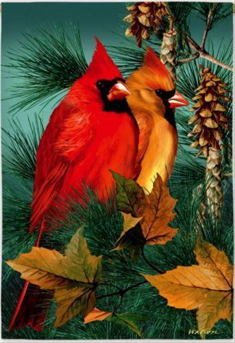 Cardinal Garden Flag Ebay