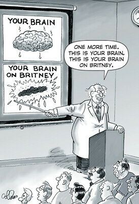 Your Brain Funny Dan Collins Birthday Card - Greeting Card by Nobleworks