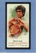 Bruce Lee Allen Ginter