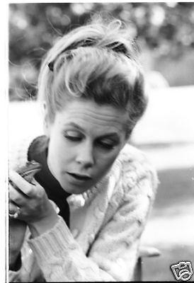 Bewitched Elizabeth Montgomery Holds Frog Original 1967 Abc Tv Photo Negative