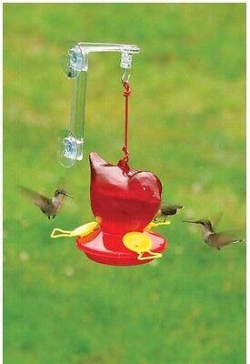 Songbird Essentials Red Hummingbird Window Feeder w/ Hanger, 12 oz. SEBCO312W