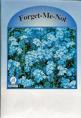 IMPERFECT Flower Seed Packets, Forget-Me-Not, 100 Pkg - Mktg, Adv, Promo