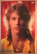 Andy Gibb Poster