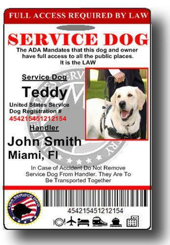 Service Dog Badge Ebay