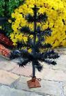 Black Feather Tree