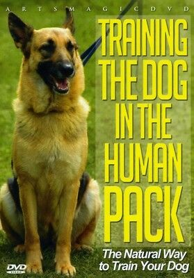 Training the Dog in the Human Pack [New DVD] Full Frame for sale  USA