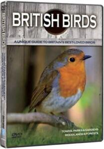 British Birds: Towns Parks Garden Woods New DVD Bird Watcher Gift Wildlife NEW