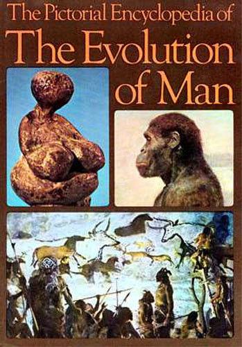 Evolution Man Picture Encyclopedia Neanderthal Boisei Habilis Australopithecus
