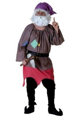 USED SEVEN DWARFS COSTUME SIZE STANDARD - Dwarf Costume