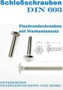 Schlossschrauben Edelstahl M10
