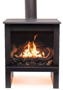 This weeks big deal TN24 free standing gas stove