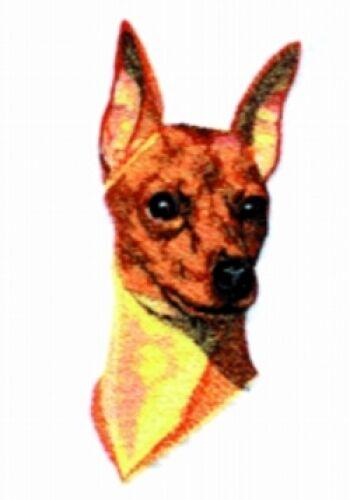 Embroidered Ladies Short-Sleeved T-Shirt - Miniature Pinscher BT3992