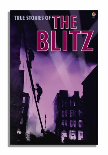 True Stories of the Blitz (Usborne True Stories),Henry Brook