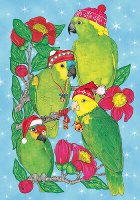 Amazon Parrot Christmas Cards Set of 10 cards & 10 envelopes ()