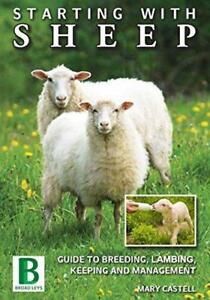Starting With Sheep by Castell, Mary | Paperback Book | 9781910632031 | NEW