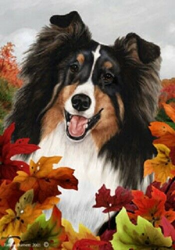 Fall House Flag - Tri Shetland Sheepdog Sheltie 13082