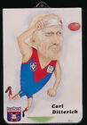 Unbranded Melbourne Demons Single AFL & Australian Rules Football Trading Cards