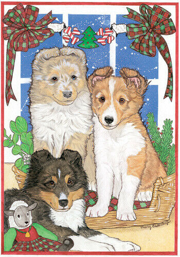 Sheltie Shetland Sheepdog Christmas Cards Set of 10 cards & 10 envelopes