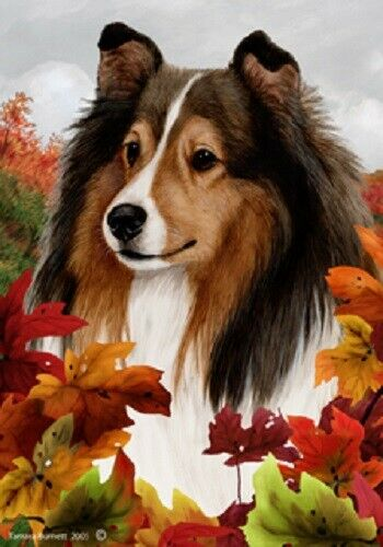 Fall House Flag - Sable Shetland Sheepdog Sheltie 13014