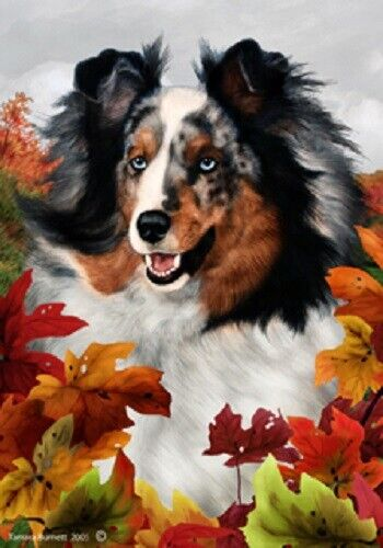 Fall House Flag - Blue Merle Shetland Sheepdog Sheltie 13090